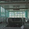 兩邊手扶梯加上中間還有樓梯