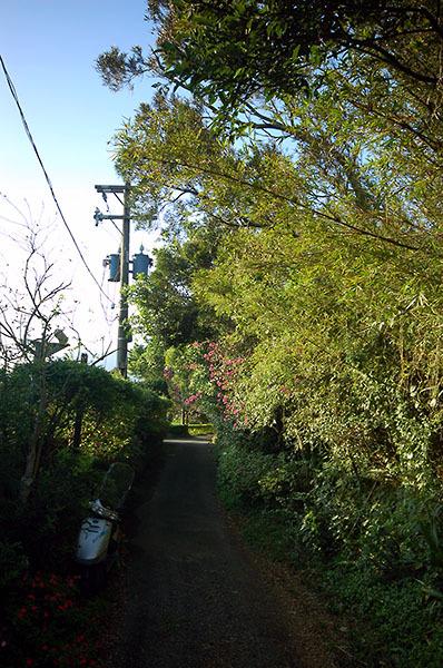 16:53 H418M 私人住宅愚年厝前的竹林小徑,寧靜的傍晚,寧靜的小路,山風徐徐,令旅人心中充滿著平靜與喜樂。