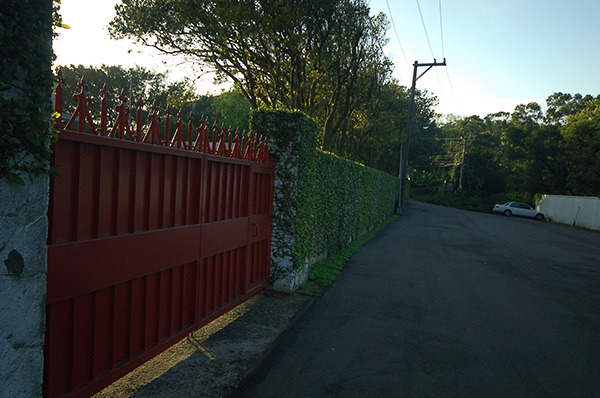 17:00 H406M 南非大使館前的紅色鐵門,白牆上爬滿了綠色的攀藤。