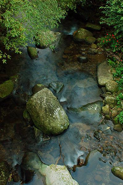 石碇豐田村內產業道路之旅