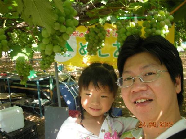 960824-D天童地區水果園05.JPG