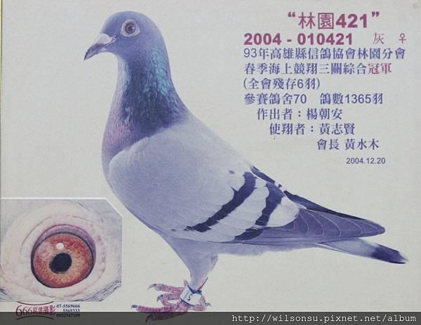 2004-010421