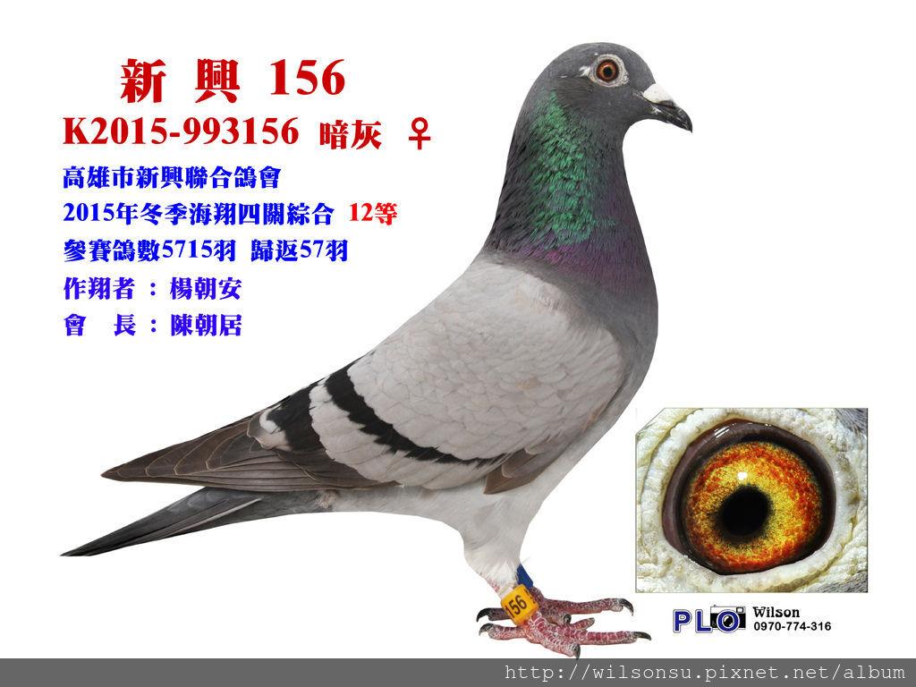 2015-993156拷貝.jpg
