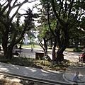 大溪老街-中正公園1