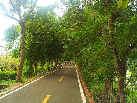 東勢-東豐自行車綠廊10綠廊