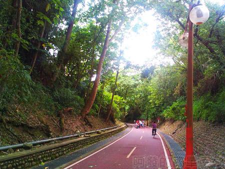 東勢-東豐自行車綠廊15綠色小徑