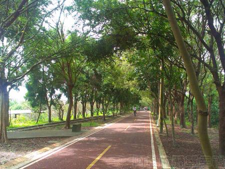 東勢-東豐自行車綠廊27綠廊