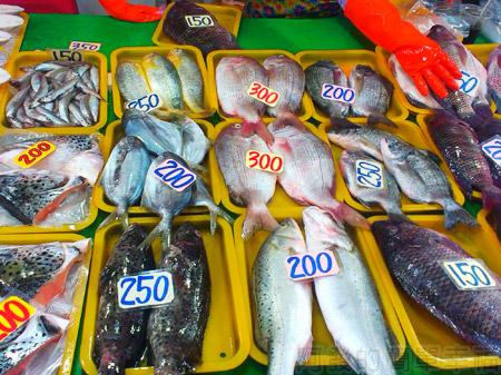 新竹-南寮漁港23漁產品直銷中心-魚產