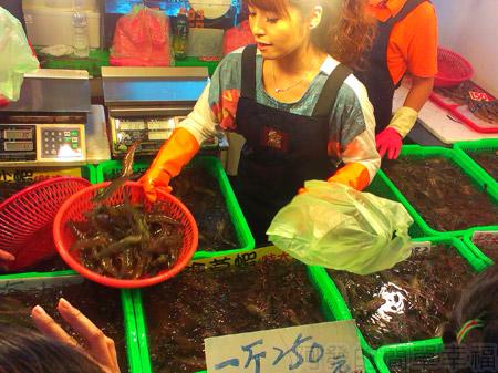 新竹-南寮漁港24漁產品直銷中心-活跳蝦