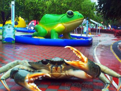 紙風車台灣動物昆蟲創意展05-紅蟳和台北樹蛙