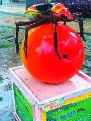 紙風車台灣動物昆蟲創意展06-姬赤星椿象