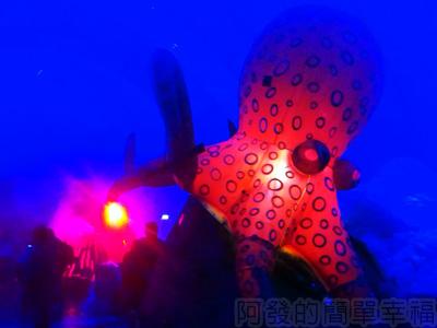 紙風車台灣動物昆蟲創意展11-抹香鯨主題館