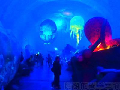 紙風車台灣動物昆蟲創意展14-抹香鯨主題館