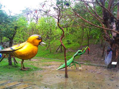 紙風車台灣動物昆蟲創意展21-螳螂補蟬黃雀在後
