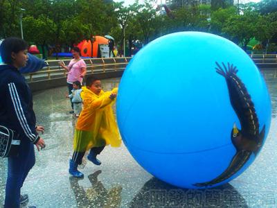 紙風車台灣動物昆蟲創意展27-鳥球互動遊戲區