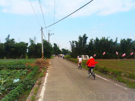 大溪韭菜花海04車道也是龍潭至鶯歌自行車道