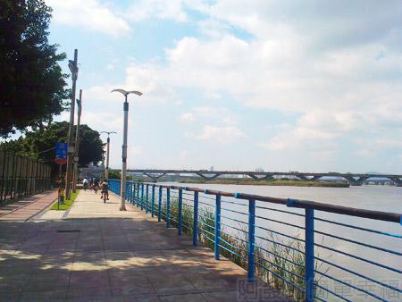 大稻埕碼頭09往忠孝橋方向的車道景緻