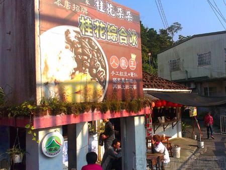 南庄老街09桂花朵朵