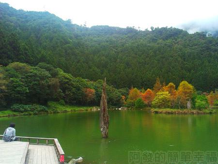 北橫明池賞楓20湖畔一景