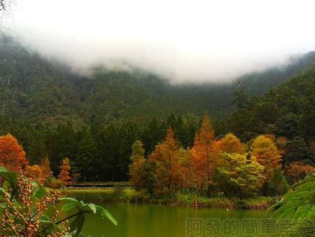 北橫明池賞楓23雲霧瀰漫的山嵐與湖中楓情