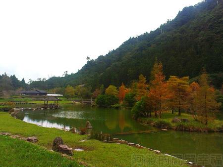北橫明池賞楓30悠閒浪漫又寧靜的明池