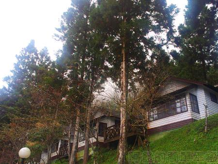 北橫明池賞楓36住宿的小木屋