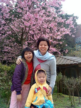 北橫明池賞楓41明池的春景-櫻花