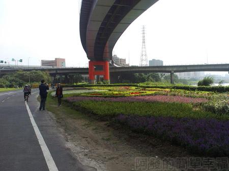 古亭河濱公園07永福橋往福和河濱公園-一旁小花海