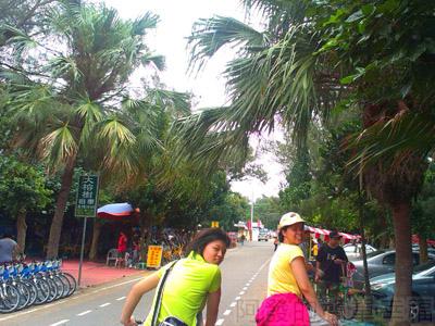 桃園新屋綠色隧道05-有許多腳踏車出租店.jpg