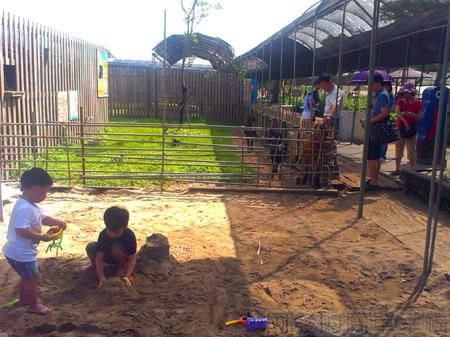 桃園觀音-向陽農場06兒童玩沙區