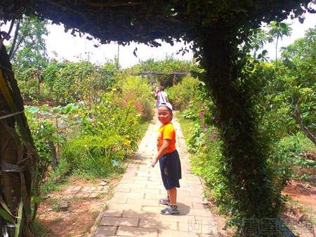 蓮荷園休閒農場19-步道