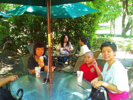 大溪花海農場17花海庭園咖啡