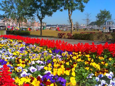 新店陽光運動園區06兒童遊戲區旁的花台