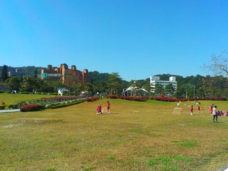 新店陽光運動園區18堤坡上的草皮