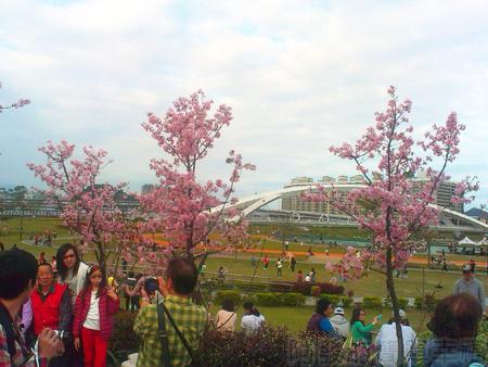 陽光運動園區櫻花自行車道01入口廣場