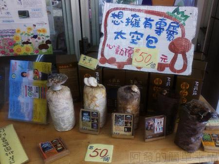 台中新社採菇趣26百菇莊-太空包