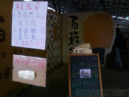 台中新社採菇趣29百菇莊-採菇需知