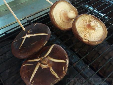 台中新社採菇趣II-08阿亮香菇園-大朵的烤香菇