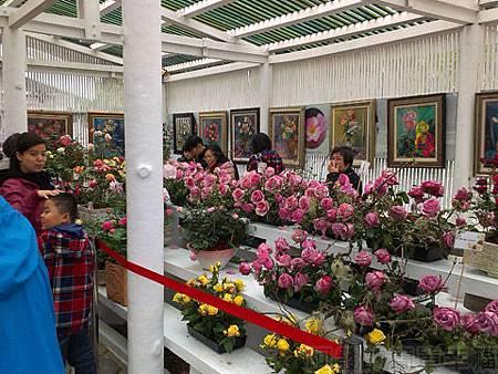 2014士林官邸玫瑰花展10玫瑰園溫室
