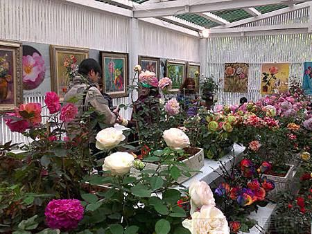 2014士林官邸玫瑰花展11玫瑰園溫室