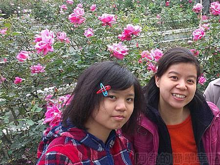2014士林官邸玫瑰花展15玫瑰園區