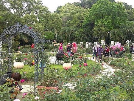 2014士林官邸玫瑰花展16玫瑰園區