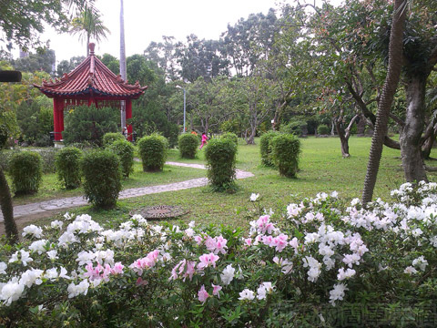 2014士林官邸玫瑰花展39中花園