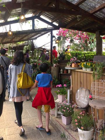 內湖碧山路採草莓I-11莓圃-入口處餐廳櫃檯