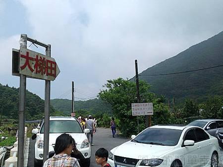 竹子湖-大梯田繡球花海03-入口小徑