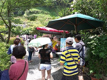竹子湖-大梯田繡球花海10-入口收費處