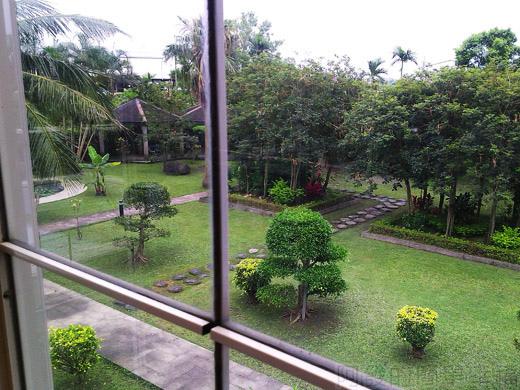 礁溪-伯朗蘭花咖啡館18二樓落地窗外鳥瞰庭園