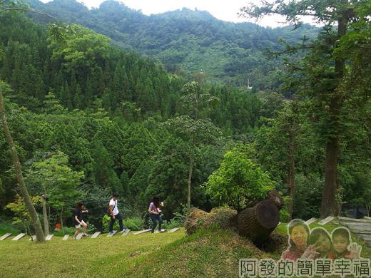 新社-薰衣草森林37許願樹區-翠綠的山巒