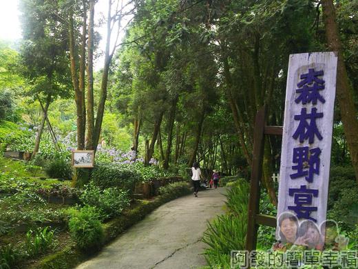新社-薰衣草森林49森林野宴