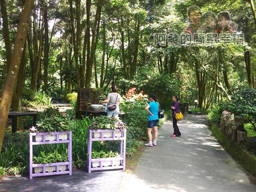 新社-薰衣草森林52森林野宴-路旁休憩處